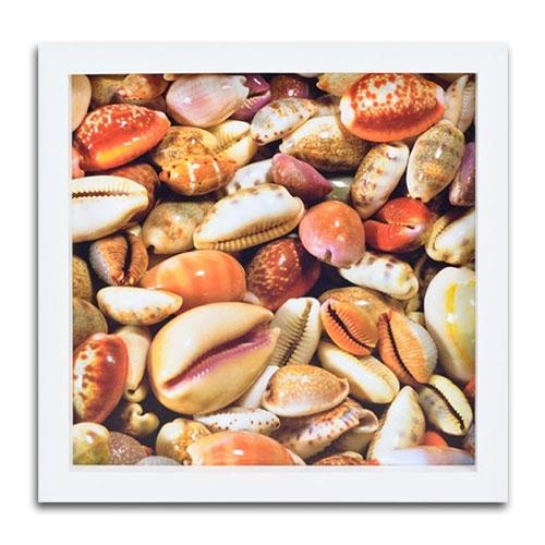 Quadro Decorativo Sea Shells em Madeira - 34x34 cm