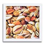 Quadro Decorativo Sea Shells em Madeira