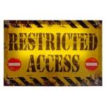 Quadro Led Restricted Access em MDF