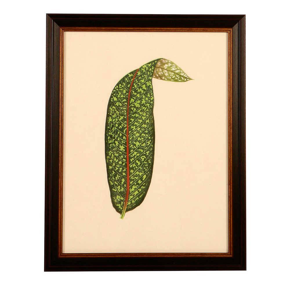 Quadro Plante Verde com Fundo Branco em Madeira - 46x37 cm
