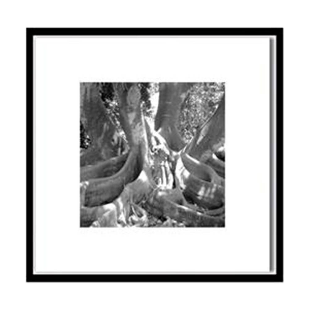 Quadro Raízes de Árvore Preto e Branco Impresso em MDF - 50x50 cm