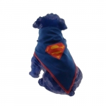 Super-dog azul bic