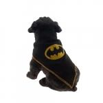 Super-dog preto