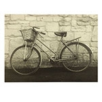 Tela Bicicleta com Cesto