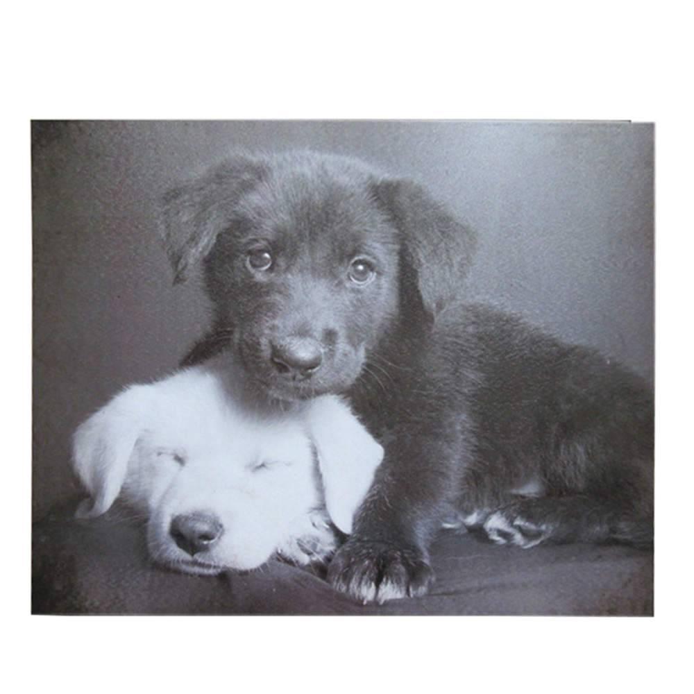 Tela Dark Cute Dogs Preto e Branco em MDF - Urban - 60x50 cm