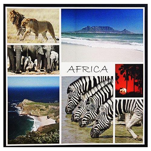 Tela Impressa Africa Fullway - 120x120 cm