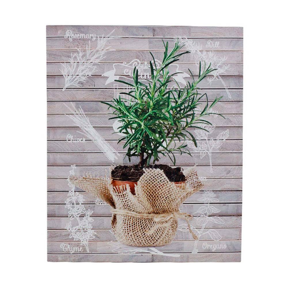 Tela Impressa Alecrim Oldway - 40x50x3 cm