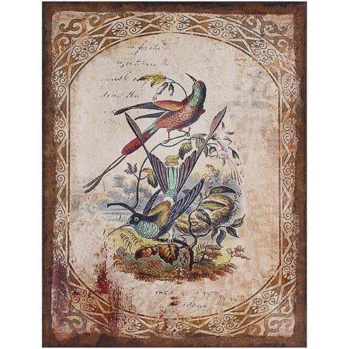 Tela Impressa Antique Classic Beija Flor Oldway - 80x60 cm