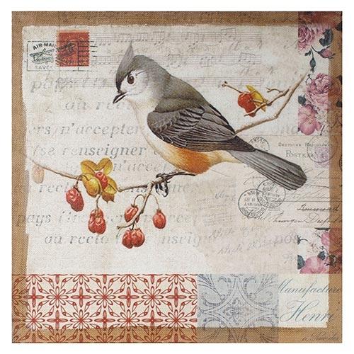 Tela Impressa Antique Pássaro Paris Oldway - 60x60 cm