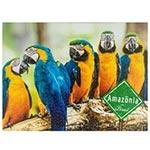 Tela Impressa Araras Azul e Amarelo Amazônia Fullway - 40x30 cm