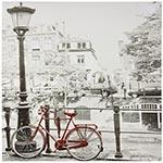 Tela Impressa Bicicleta Vermelha Fullway
