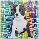 Tela Impressa Cachorro c/ Fundo Colorido Fullway - 60x60 cm