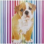 Tela Impressa Cachorro c/ Fundo de Listras Fullway - 60x60 cm
