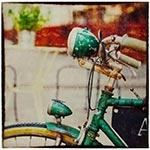 Tela Impressa Frente de Bike Verde Fullway - 60x60 cm