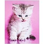 Tela Impressa Gato c/ Funco Rosa Fullway - 50x40 cm