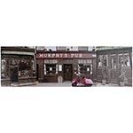 Tela Impressa Murphis Pub Fullway - 30x100 cm