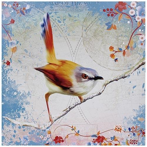 Tela Impressa Pássaro Laranja/Azul Fullway - 70x70 cm