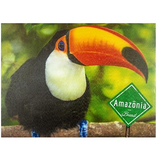 Tela Impressa Tucano da Amazônia Fullway - 40x30 cm