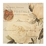 Tela Rosas Brancas / Carta Postal