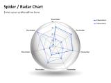 Spider Radar Chart 6
