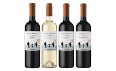 12 botellas de vino morandé one to one reserva - Groupon
