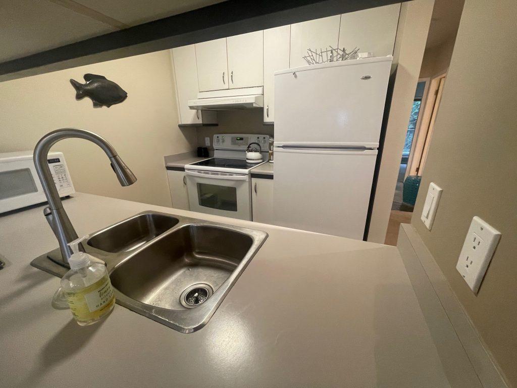 kits condo kitchen