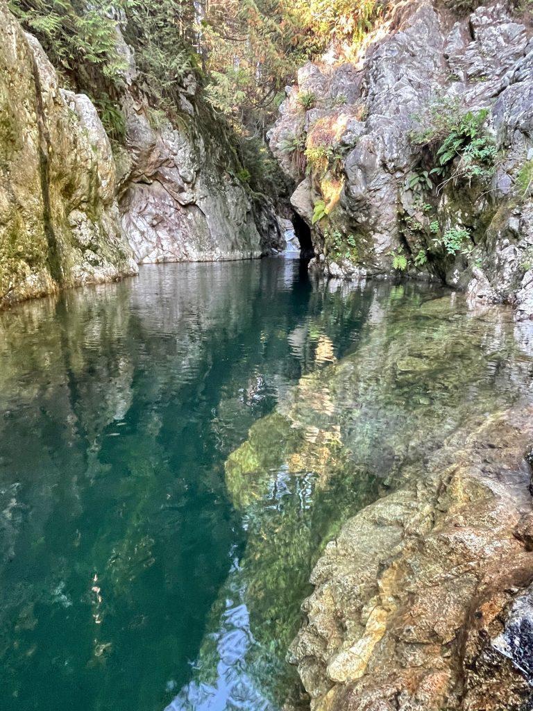 Lynn Canyon North Vancovuer