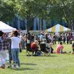 Michigan Chicken Wing Festival 2020