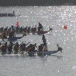Acadiana Dragon Boat Festival 2020