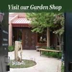 Albuquerque Garden Center Harvest Fair 2021