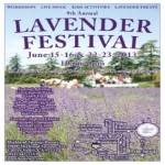 Annual Lavender Festival 2017