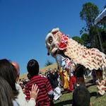 Asia Fest 2017
