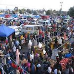 Auckland Market 2020