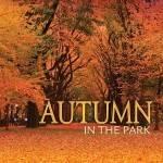 Autumn in the Park 2017