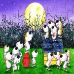 Barking at the Moon Festival 2017
