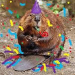 Beaver Bash 2018