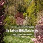 Big Backyard BBQ and Music Festival 2022
