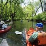 Bronx River Festival 2022
