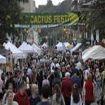 Cactus Festival 2017
