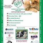 Celebrate the Dublin Pet Fair 2020