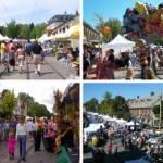 Chestnut Hills Fall For the Arts Festival 2021