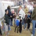 Clark County Fair and Rodeo 2021