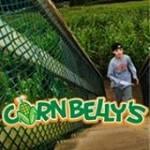 Cornbelly's Corn Maze and Pumpkin Festival 2016