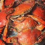 Crab Festival 2019