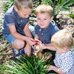 Dash to Riverbank for a play date with nature 2019