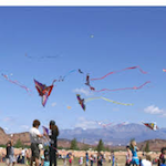 Dixie Power Kite Festival 2020