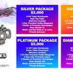Electric Zoo Labor Day Weekend VIP Packages! Armin, Deadmau5, Prydz + more! 2019