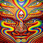 Elite Force Rainbow Serpent Festival 2019