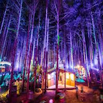 Far Out Forest Festival 2018