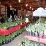 Garden Fair and Plant Sale 2020